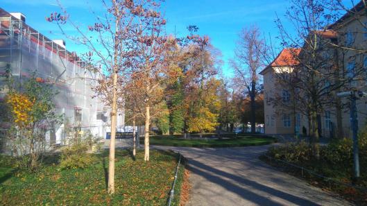 Ärgerlich: Das 3 Königinnen Palais ist schon wieder Baustelle und das Schloss ab Dienstag dicht.