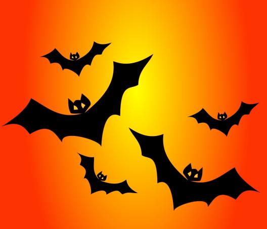 bats-151206_1280