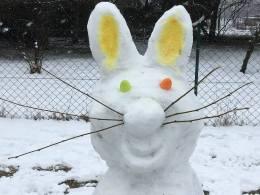 Schneehase2