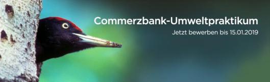 Commerzbank_Praktikum_Nationalpark