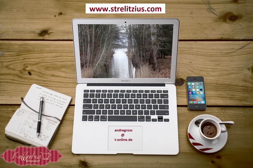 Strelitzius Blog